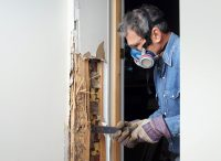 Termite Damage Repair Newport Beach CA