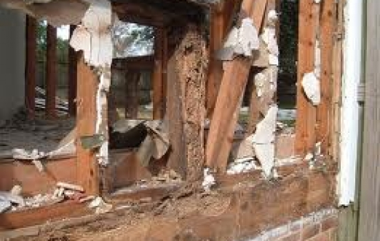 4 Tips for Effective Termite Prevention & Protection